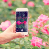 iPhone7s /Plus ヤマダ電機 ヨドバシカメラ ビックカメラ 量販店 予約 在庫 予想